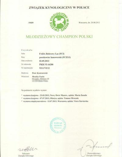 Fara-dokument-9