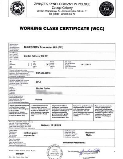 Jagoda-certyfikat